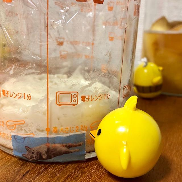 りんごの天然酵母で元種作り