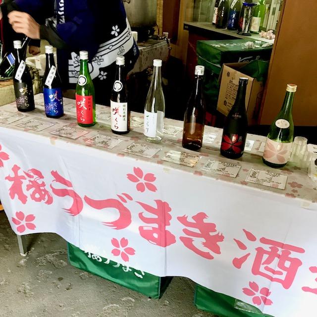 桜うづまきの新酒咲くら